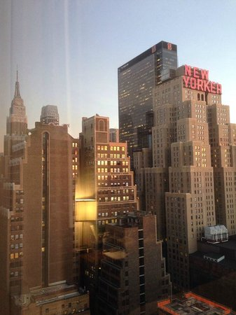 Doubletree By Hilton - Times Square South : View from my room