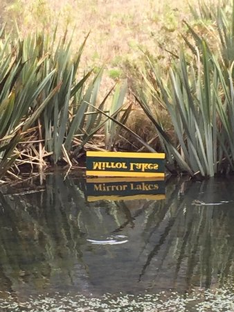 Mirror Lakes Walk : Just what the sign says.