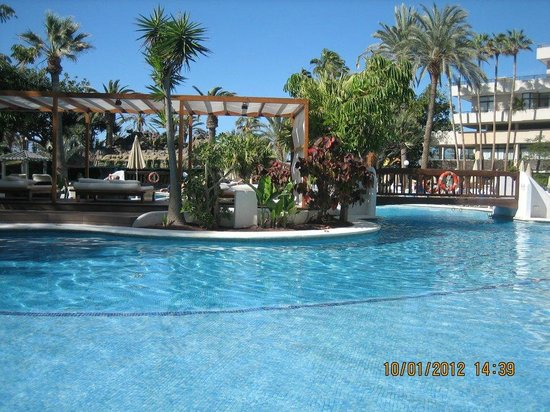 Piscina picture of h10 conquistador playa de las for Alberca las americas