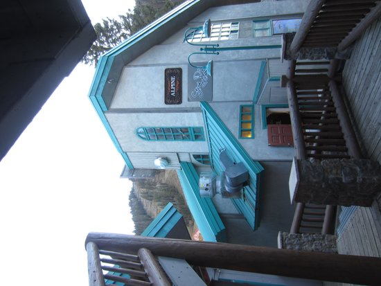 Tim's Stray Dog Cantina: view from walkway to lodging