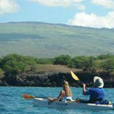 Kohala Kayak Club: Paddling in Puako