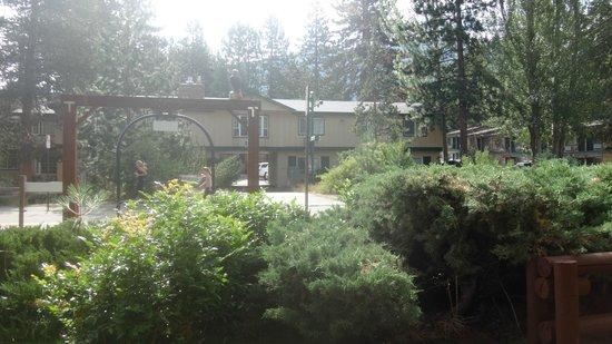 Americas Best Value Inn-Tahoe City/Lake Tahoe: vista da rua em frente ao hotel...lugar aconchegante e muito arborizado