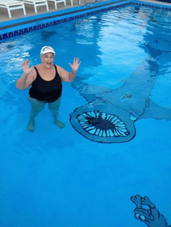 Holiday Lodge Motel : What a fun swimming pool!