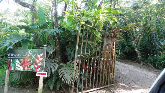 El Hotelito at the Rainforest Experience Farm: Entrance