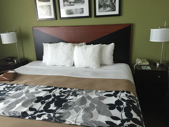 Sleep Inn Ft. Lauderdale International Airport: room