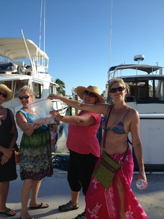 Sea Clusion Charter Sport Fishing Key West 2018 All
