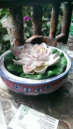 Jane's Guesthouse : entrance beautiful lotus