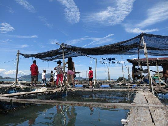 Pangkor Guesthouse SPK: floating fishfarm visiting