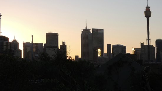 Regents Court Sydney : Rooftop garden view at sunset