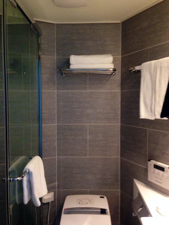 The WC is flanked by a narrow shower stall & a small sink ...