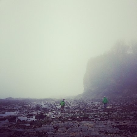 Porthpean Beach : There's really good rock pools in this mist honest!