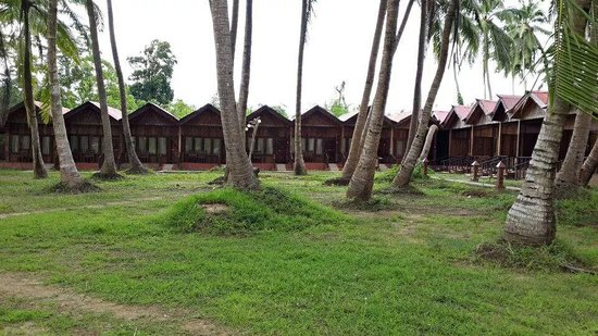 Sea Princess Port Blair: beautiful cottages!