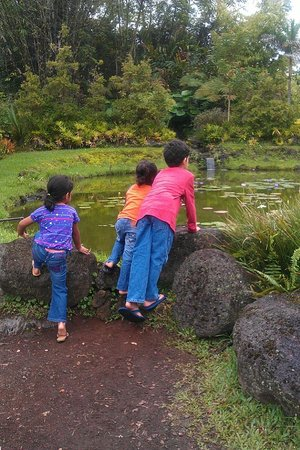 Panaewa Rainforest Zoo and Gardens: Kids love the freedom to explore without crowds