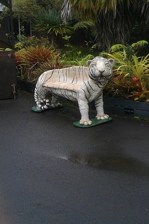 Panaewa Rainforest Zoo and Gardens: In memory of Namaste, the white tiger