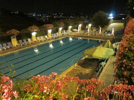 Mount Zion Hotel : бассейн