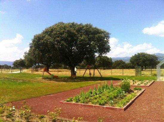 Terraza fotograf a de el gallinero collado villalba for Gallinero jardin