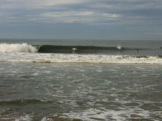 Gumnut Beach House Homestay: The surf
