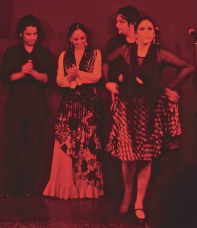 Alma Flamenca: Four of the six amazing performers
