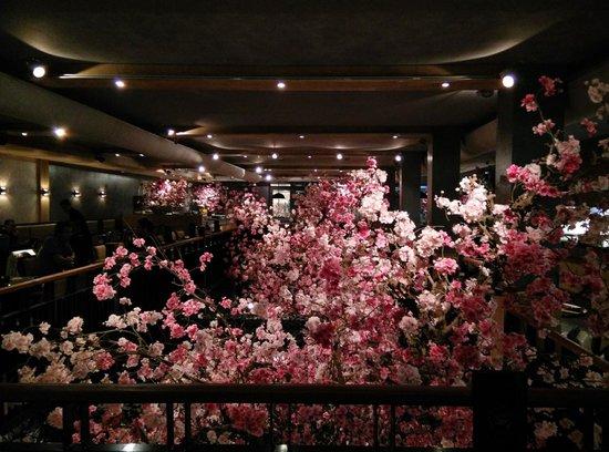 https://media-cdn.tripadvisor.com/media/photo-s/06/d3/15/e3/japans-restaurant-sushi.jpg