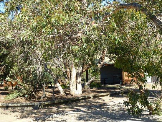 Kangaroo Island Wilderness Retreat: le jardin