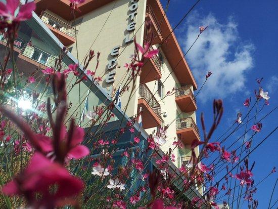 Hotel Eden: ..l'Hotel...