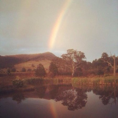 Barrington Hideaway: Rainbow over one of the dams on the farm. The dams are also a great place to see beautiful bird
