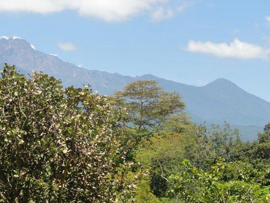 The African House: Blick auf den Mt. Meru