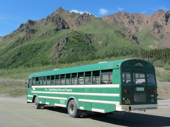 eielson shuttle bus picture of denali national park bus tours day tours denali national park. Black Bedroom Furniture Sets. Home Design Ideas