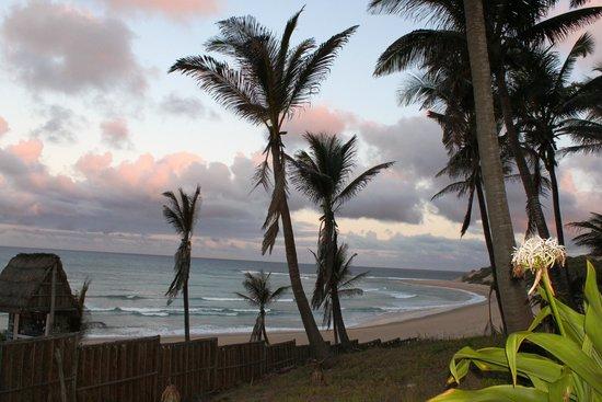 Jeff's Palm Resort: Almost sunset