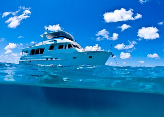 Aroona Luxury Boat Charters - Day Cruise