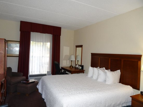 Hampton Inn Albany - Wolf Road (Airport): Bedroom