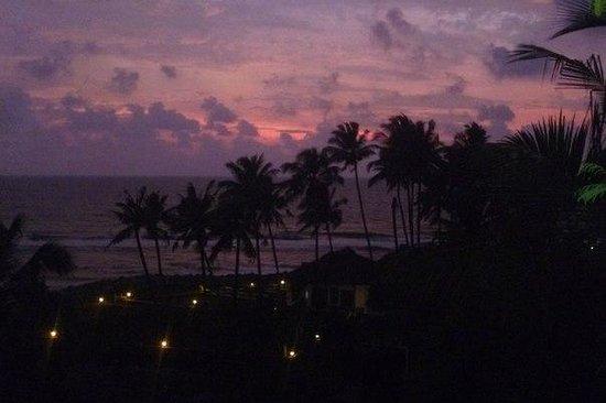 Oasis Beach Resort: Елена
