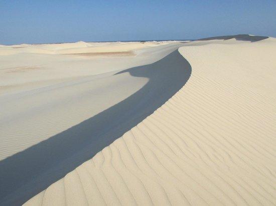Shoab beach: Sand dunes