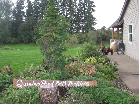 Quimby's Pond Bed and Breakfast: grounds by the house
