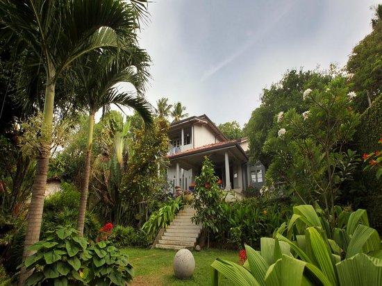 Hibiscus Villa