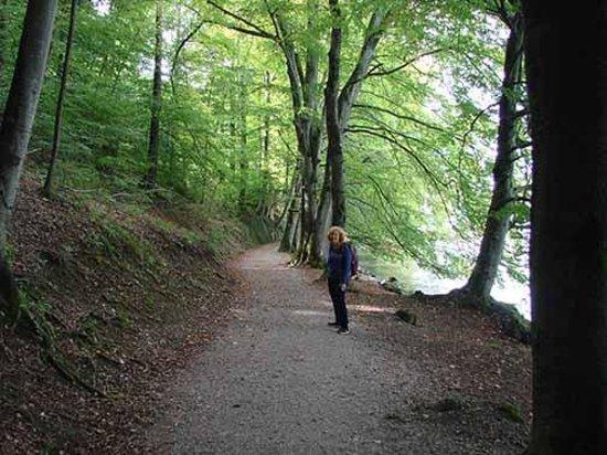 BLS Schifffahrt : Trail to Spietz - gorgeous walk
