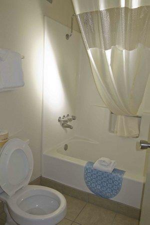 Travelodge Holbrook: Bathroom