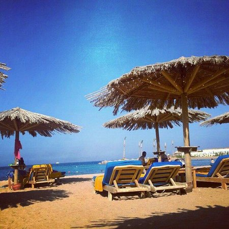 Hilton Hurghada Plaza: Paradise for eyes.... ♡