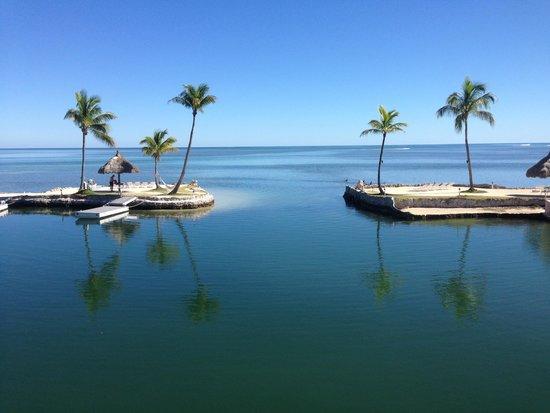 Chesapeake Beach Resort: View from tiki room