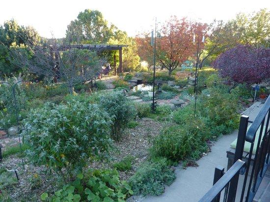Ravens Ridge : Garden