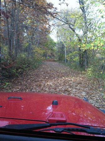 Fort Niangua River Resort: one of the trails on the property