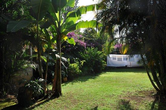 Christina House: giardino