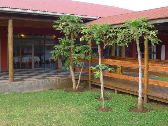 Hotel Puku Vai : Looking into dining room