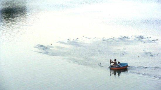 Bhavani River - Picture of Gobichettipalayam, Erode District