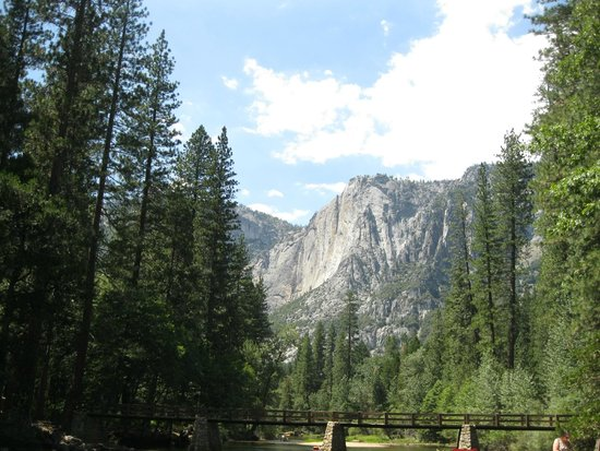 Lower Pines Campground : Half Dome