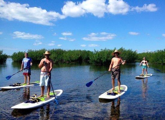 PaddleJoy Paddleboard Adventures