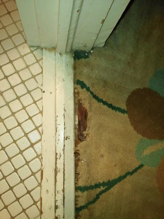 New Orleans Guest House: bathroom doorway room 8