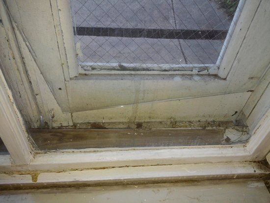 New Orleans Guest House : window casing
