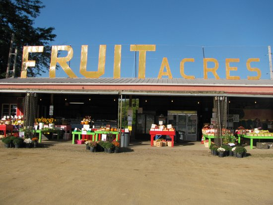 Coloma, MI: We have lots of fresh fruits and vegetables from our Local friends and neighbors