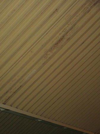 Roompot Beach Resort : Schwimmparadies Decke
